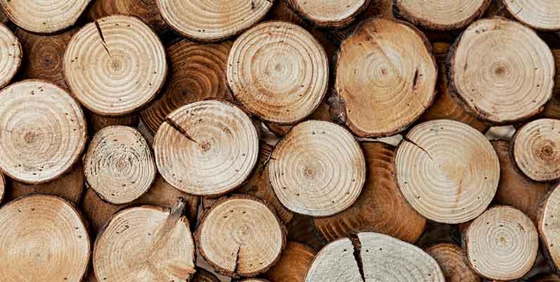 Tipos de madera para puertas